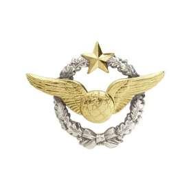 Insigne Brevet Navigateur Armée de l'Air